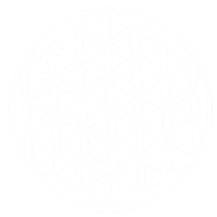 Mandala Nr 11 Lebensblume weiss