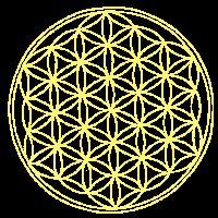 Mandala Nr 11 Lebensblume gelb