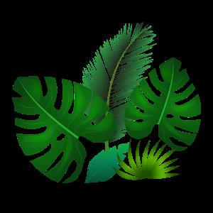 Grüne tropische Blätter