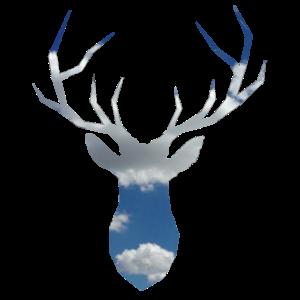 Hirschkopf mit Himmel als Hintergrund