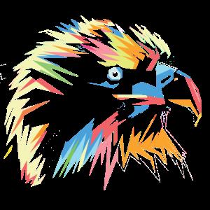 Falke in Bunt
