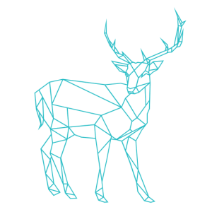 Hirsch abstrakt