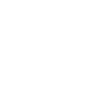 Wanted Chosen Loved Adopted Adoption T-Shirt