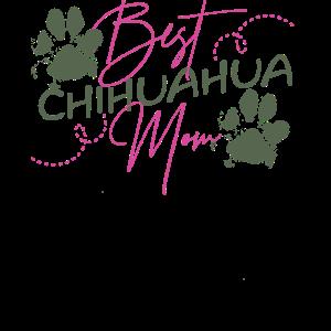 Beste Chihuahua Mutter Sport Rasse Hund