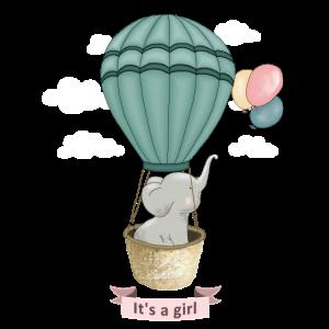 Baby Elefant It s a Girl