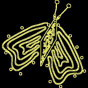 Filigraner, leuchtender Schmetterling