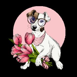 Jack Russel Terrier Frühlings Hunde T-Shirt