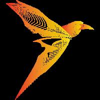 Vogel Paradies
