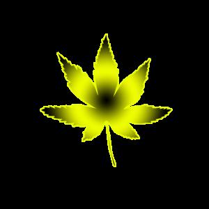 Hanfblatt yellow