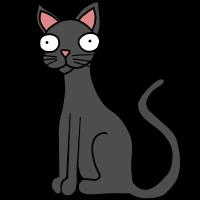 Katze Hauskatze Mieze Kitti