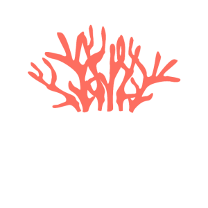 Living Coral - Trendfarbe 2019