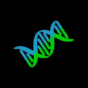DNS DNA Strang Logo Bunt Grün Blau