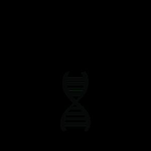 DNA DNS Sieger Logo Silhouette