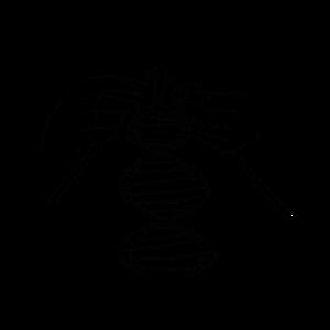 Entschlüsselung DNA DNS Code Stricken