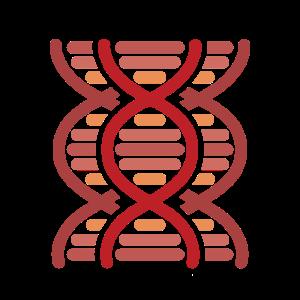 DNS DNA Strang Logo Rot