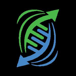 DNS DNA Strang Logo Grün Blau
