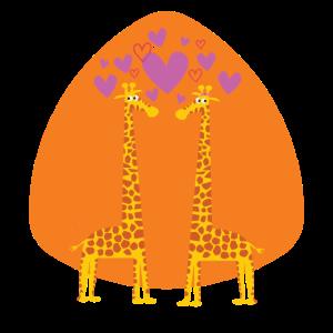 Liebende Giraffen