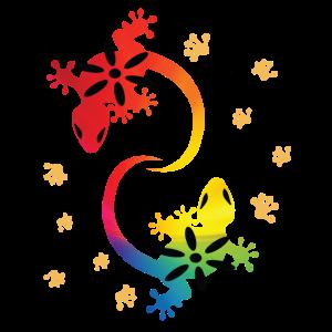 Echse Salamander Eidechse Lurch Regenbogen bunt