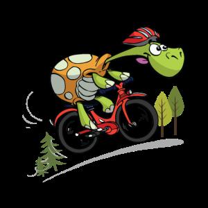 coole Schildkröte auf dem Fahrrad