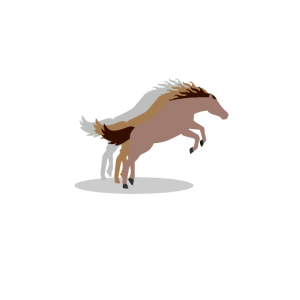 Spring reiten Pferd springt