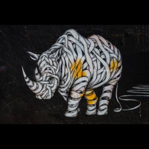 street art rhino