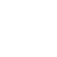 Ladies Night Party Crew Logo