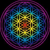 Blume des Lebens Regenbogen