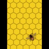 Biene Honig Waben Muster Pattern