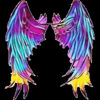 Wings Angel Engel Fluegel Engelfluegel 2reborn