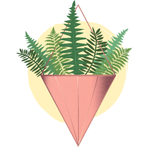 Houseplant Fern Triangle