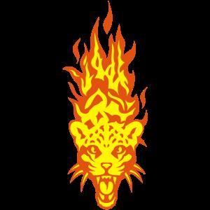 Kopf in Flamme Flamme Flamme 310