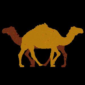 Zwei Kamele Tiere verschiedene Richtungen
