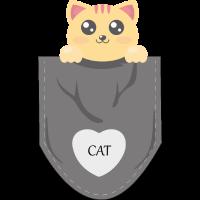 Cat in my pocket