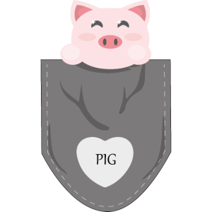 Pig in my pocket