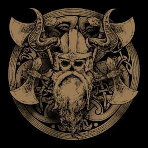 Wikinger Krieger Viking Warrior