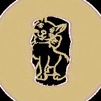 Happy Kitten mit Schleife gold