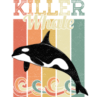 Orca Killerwal Schwertwal