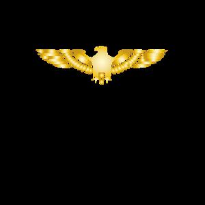 Adler Steinadler Fischadler Seeadler Greifvogel