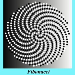 Fibonacci spiral pattern in black and white