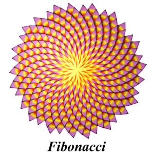 Fibonacci-Blume