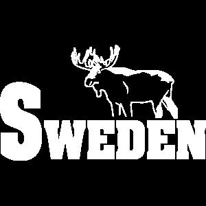 Schweden - Elch