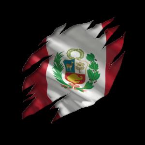 Peru Flagge stolz peruanisches Südamerika Latein