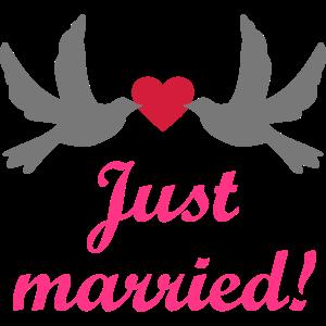 Neu Verheiratet Hochzeit Hochzeitsreise Brautpaar