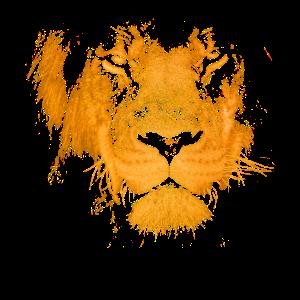 löwe Kopf Wildkatze Mähne