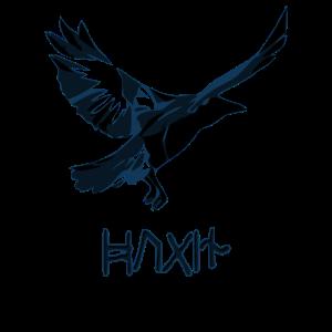 Wikinger Runen und Hugin Rabe von Odin