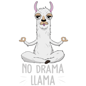 No Drama Lama Llama Yoga Meditaion Geschenk