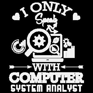 Computer Systemanalytiker Datenverarbeitung