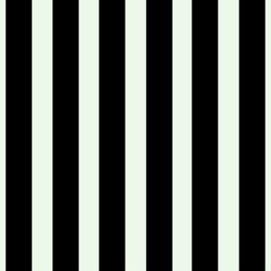 Stripes MJ Runway 2013