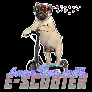 Mops mit Blumenkranz auf Escooter