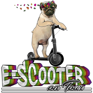 Escooter Electricscooter cooler Mops on Tour